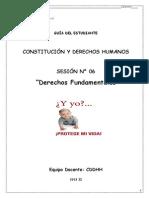 Modulo Nº 06_Derechos Fundamentales