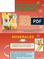 minerales.2