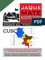 Resultados Electorales Municipales 2010 - Correlacion de Fuerzas Politicas