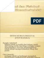 Sistem Musculoskeletal