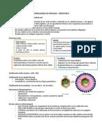 Generalidades Virologia Herpes Hepatitis SIDA