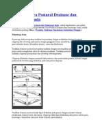 Prosedur Cara Postural Drainase Dan Fisioterapi Dada
