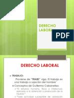 1055_380205_20131_0_DERECHO_LABORAL_Y_SOCIAL