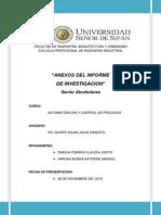 Anexos Del Informe