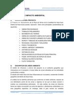 IMPACTO AMBIENTAL HUACHUAS