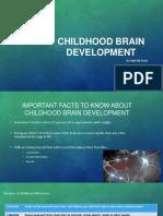 childhood brain development ppt