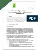 Model de schiţă de plan strategic