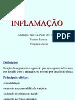 Inflama__o