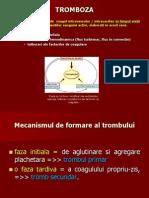 Tromboza Infarct