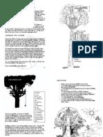 Secret Treehouse Project Zine - Booklet layout
