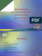 visiondelprocediordinario-120615134825-phpapp01