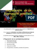 Regulación  de la Expresión Genética