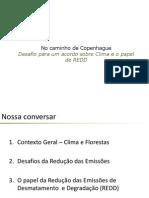 Servico Florestal REDD