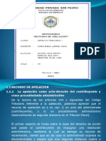 Diapositivas Recurso de Apelacion