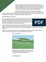 Historia da arquitetura EDUCACIONAL.pdf