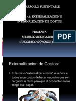4.5 Externalizacion e Internalizacion de Costos
