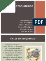 Tarea 2 - Ciclos Biogeoquímicos