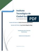 Principios y Características de la Teoría de Restricciones