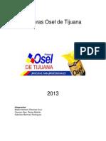 Manal de Planeacion Pinturas Osel de Tijuana.docx