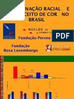 EDUCAÇÃO DO NEGRO NO BRASIL (FUNDAÇÃO PERSEU ABRAMO)