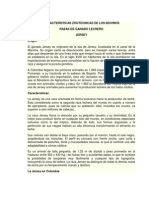 CARACTERÍSTICAS ZOOTECNICAS DE LOS BOVINOS