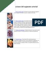 patologia circulatoria