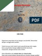 Paleontologi2013-09