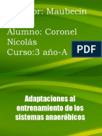 Adaptaciones al entrenamiento de los sistemas anaer+¦bicos (1)