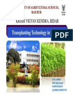 Redgram Transplanting Technology