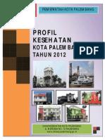 Kota Palembang Profil
