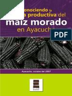 Conociendo La Cadena Productiva Del Maiz Morado en Ayacucho11