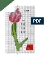 Raster Tulpe 1