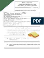 B - 2.2 - Teste Diagnóstico -  Ocorrência de falhas e dobras (1).pdf