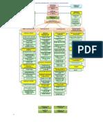 Structura Organizatorica Victoriabank Pe Trimestrul III Anul 2013