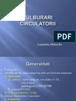 Lp1_Tulburari circulatorii