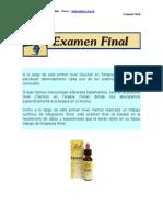 Auxiliar en T Florales Examen Final