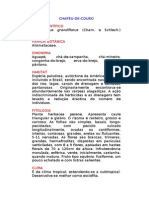 Chapéu-de-couro - Echinodorus grandiflorus (Cham. e Schlech.) Mitcheli. - Ervas Medicinais – Ficha Completa Ilustrada
