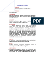 Chapéu-de-couro - Echinodorus macrophyllus (Kunth.) Mich. - Ervas Medicinais – Ficha Completa Ilustrada