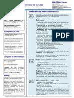 cv-audit-interne-controle-de-gestion.pdf