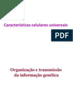 2012-2013 Turma 11 Caracteristicas Celulares Universais I-1