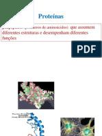2012-2013_Turma11Proteinas_funcoes