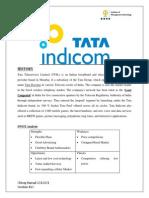 Tata Indicom Brand Management
