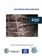 India's-Egg-and-Chicken-Meat-Industries