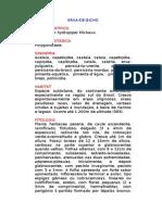 Erva-de-Bicho - Polygonum hydropiper Michaux. - Ervas Medicinais – Ficha Completa Ilustrada