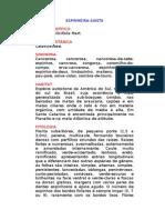 Espinheira-Santa - Maytenus ilicifolia Mart. - Ervas Medicinais – Ficha Completa Ilustrada