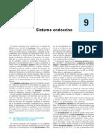 Anatomía y fisiología del sistema endocrino
