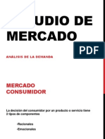 Estudio de Mercado Demanda