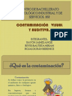 Contaminacion Visual y Auditiva