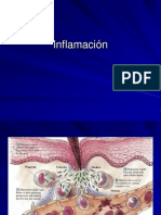Clase 2 y 3 Inflamacion