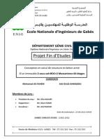 Rapport Pfe Fahem Et Ould Ahmado